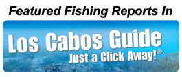 Los Cabos Guide
